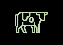 001-cow-01
